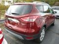 2014 Sunset Ford Escape Titanium 2.0L EcoBoost 4WD  photo #2