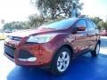2014 Sunset Ford Escape SE 1.6L EcoBoost  photo #1