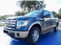 Blue Jeans Metallic 2013 Ford F150 Gallery