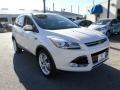 2014 White Platinum Ford Escape Titanium 2.0L EcoBoost  photo #7