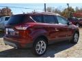2014 Sunset Ford Escape Titanium 1.6L EcoBoost  photo #3
