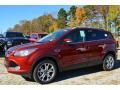 2014 Sunset Ford Escape Titanium 1.6L EcoBoost  photo #6