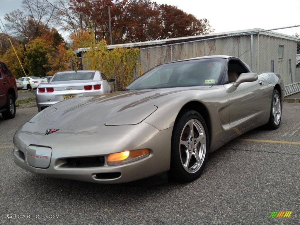 1998 Light Pewter Metallic Chevrolet Corvette Coupe