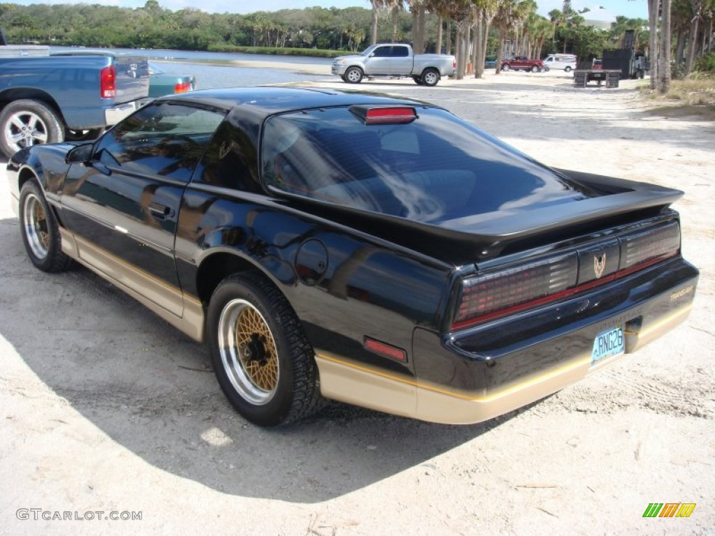 1986 black pontiac firebird trans am 87864572 photo 5 gtcarlot com car color galleries gtcarlot com