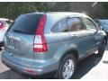 2010 Opal Sage Metallic Honda CR-V EX-L AWD  photo #6