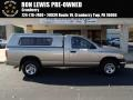 2004 Light Almond Pearl Dodge Ram 1500 SLT Regular Cab 4x4 #87998985