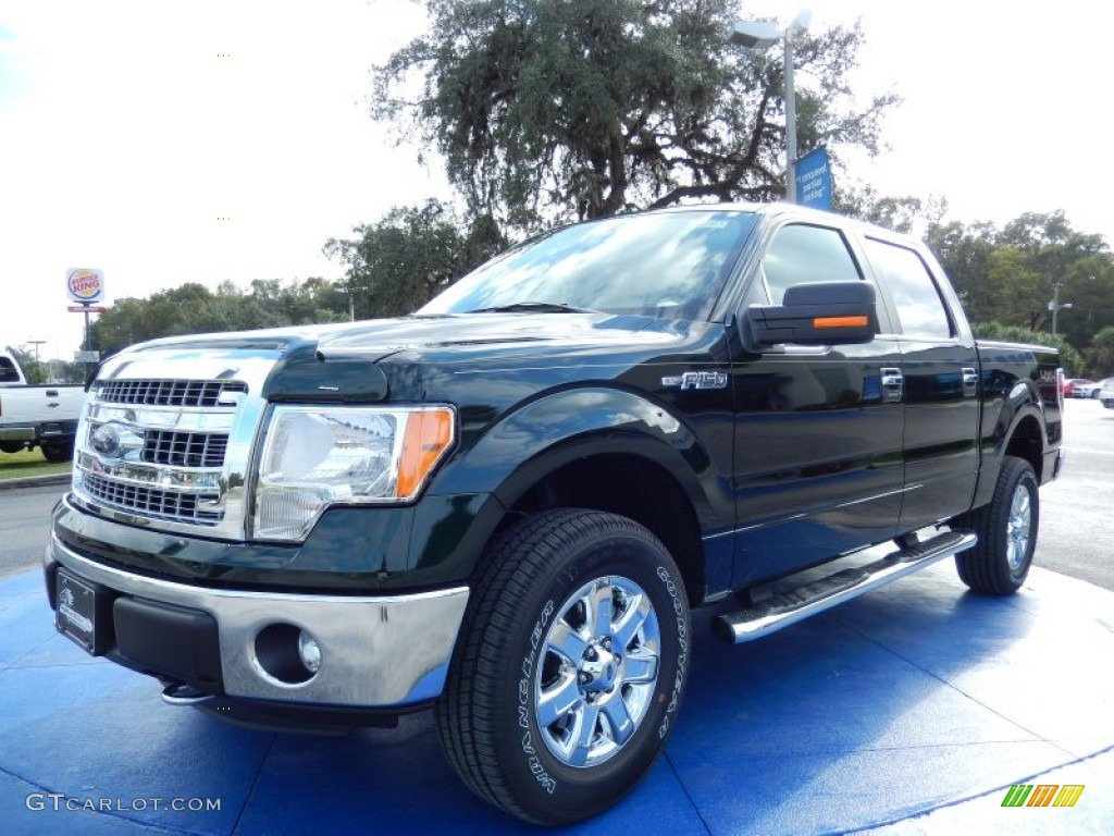 2014 green gem ford f150 xlt supercrew 4x4 88103836 car color galleries. Black Bedroom Furniture Sets. Home Design Ideas