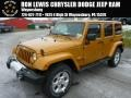 Amp'd 2014 Jeep Wrangler Unlimited Sahara 4x4