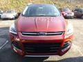 2014 Sunset Ford Escape Titanium 2.0L EcoBoost 4WD  photo #5