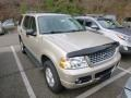 2005 Pueblo Gold Metallic Ford Explorer XLT 4x4 #88494010