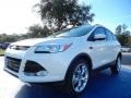 2014 White Platinum Ford Escape Titanium 2.0L EcoBoost  photo #1