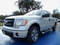Ingot Silver 2014 Ford F150 Gallery