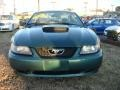 2003 Tropic Green Metallic Ford Mustang V6 Coupe  photo #9