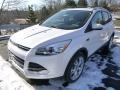 2014 White Platinum Ford Escape Titanium 2.0L EcoBoost 4WD  photo #5