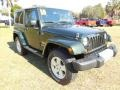 2010 Natural Green Pearl Jeep Wrangler Sahara 4x4  photo #11
