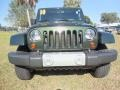 2010 Natural Green Pearl Jeep Wrangler Sahara 4x4  photo #14