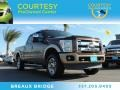 2011 Golden Bronze Metallic Ford F250 Super Duty King Ranch Crew Cab 4x4 #89120487