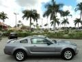 2006 Tungsten Grey Metallic Ford Mustang V6 Premium Coupe  photo #5
