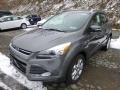 2014 Sterling Gray Ford Escape Titanium 2.0L EcoBoost 4WD  photo #5