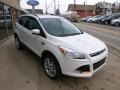 2014 White Platinum Ford Escape Titanium 2.0L EcoBoost 4WD  photo #3