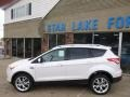 2014 White Platinum Ford Escape Titanium 2.0L EcoBoost 4WD  photo #7