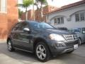 Steel Grey Metallic 2010 Mercedes-Benz ML 350