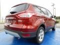 2014 Sunset Ford Escape SE 1.6L EcoBoost  photo #3
