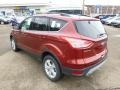 2014 Sunset Ford Escape SE 1.6L EcoBoost 4WD  photo #6