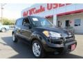 Shadow Black 2010 Kia Soul +