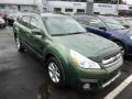 Cypress Green Pearl 2013 Subaru Outback 2.5i Limited