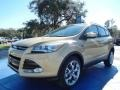 2014 Karat Gold Ford Escape Titanium 2.0L EcoBoost  photo #1