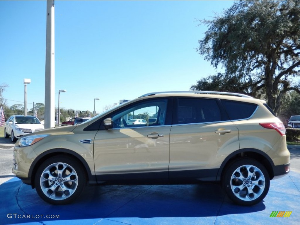 2014 Escape Titanium 2.0L EcoBoost - Karat Gold / Medium Light Stone photo #2