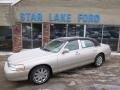 Light French Silk Metallic 2008 Lincoln Town Car Signature Limited