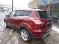 2014 Sunset Ford Escape Titanium 2.0L EcoBoost 4WD  photo #6