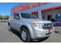 2010 Ingot Silver Metallic Ford Escape XLT V6 #90594439