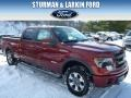 Sunset 2014 Ford F150 Lariat SuperCrew 4x4
