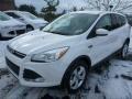 2014 White Platinum Ford Escape SE 2.0L EcoBoost 4WD  photo #6