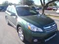 Cypress Green Pearl 2014 Subaru Outback 2.5i Limited