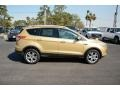 2014 Karat Gold Ford Escape Titanium 1.6L EcoBoost  photo #4
