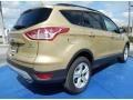 2014 Karat Gold Ford Escape S  photo #3