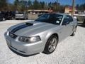 2001 Silver Metallic Ford Mustang GT Coupe #91092481