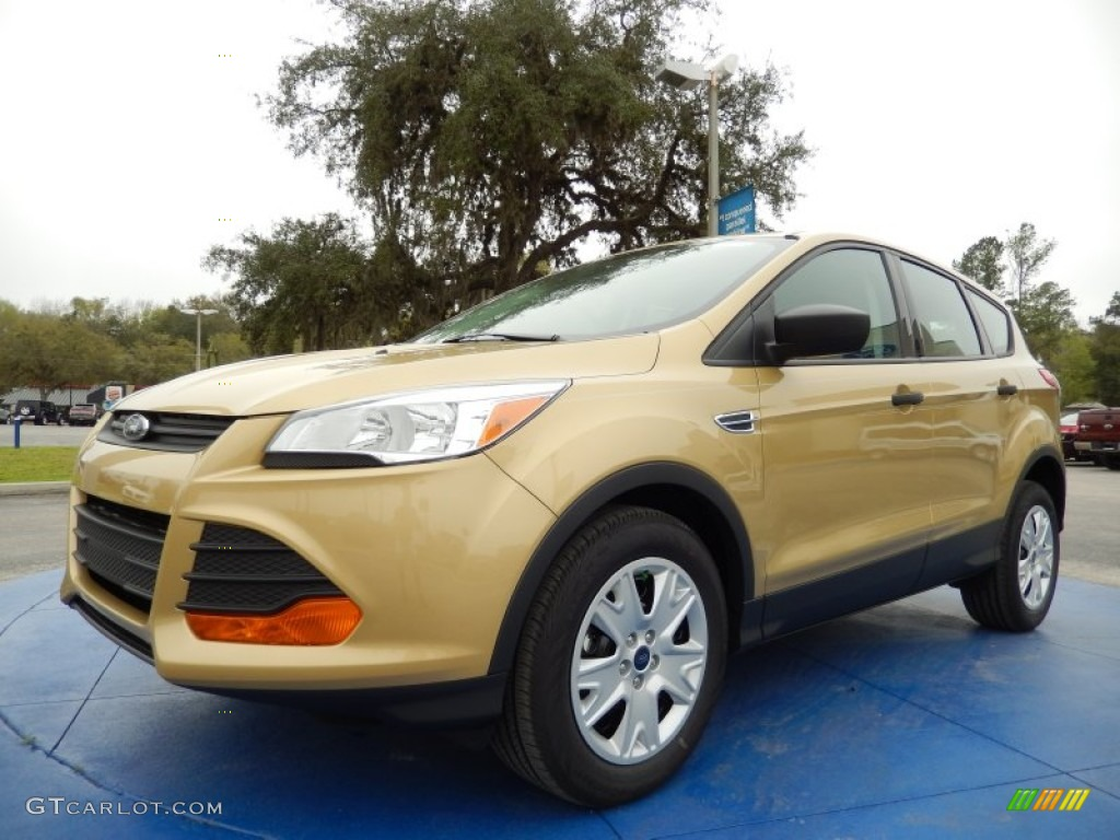 2014 Escape S - Karat Gold / Charcoal Black photo #1