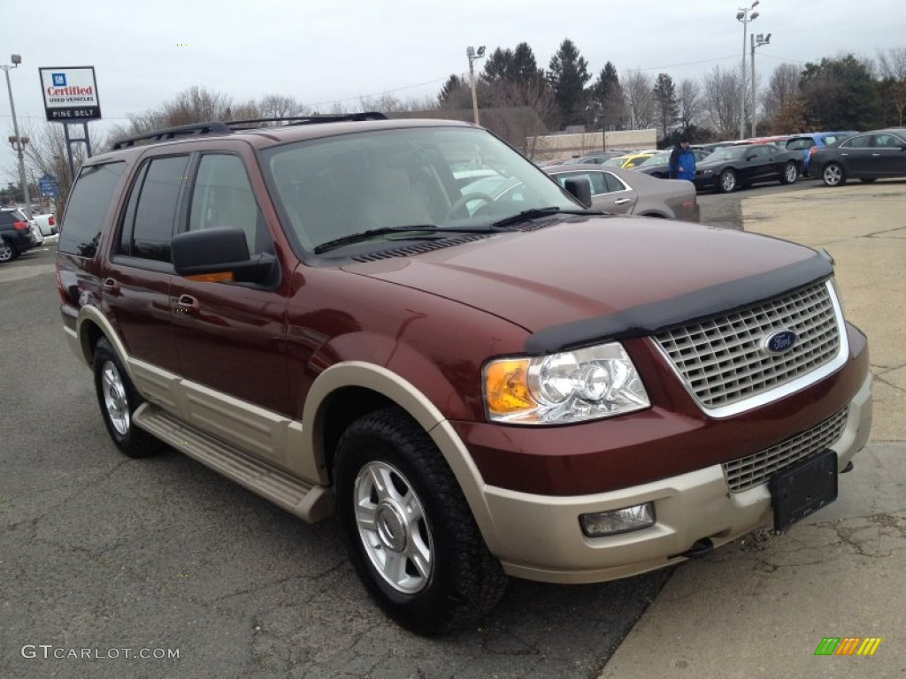 2005 Ford Expedition Eddie Bauer Interior Carburetor Gallery