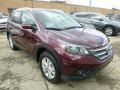 2014 Basque Red Pearl II Honda CR-V EX-L AWD  photo #6