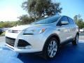 2013 Ingot Silver Metallic Ford Escape SEL 1.6L EcoBoost #91704063
