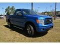 Blue Flame - F150 STX Regular Cab 4x4 Photo No. 3