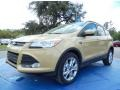 2014 Karat Gold Ford Escape SE 2.0L EcoBoost  photo #1