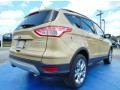 2014 Karat Gold Ford Escape SE 2.0L EcoBoost  photo #3