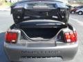 2004 Ford Mustang Medium Graphite Interior Trunk Photo