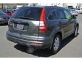 2011 Polished Metal Metallic Honda CR-V SE 4WD  photo #5